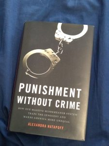 "A picture of the book ""Punishment Without Crime"" by Alexandra Natapoff"