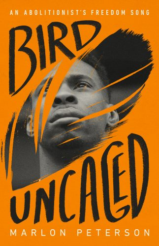 """The cover of the book """"Bird Uncaged: An Abolitionist's Freedom Song"""